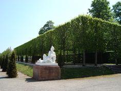 The Schwetzingen palace gardens. Images by Barbara from Gardening in Mannheim.