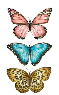 Ilustração by Bianca Pozzi.Bianca Pozzi on We Heart ItDelicados & Coloridos Source by I do not take credit for the images in this post.ImageFind images and videos about butterfly on We Heart It - the app to get lost in what you love. Butterfly Images, Butterfly Drawing, Butterfly Painting, Drawings Of Butterflies, Purple Butterfly Tattoo, Butterfly Quotes, Iphone Background Wallpaper, Aesthetic Iphone Wallpaper, Aesthetic Wallpapers