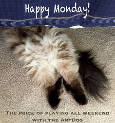 Well, someone had a fun weekend!  Have a great Summer week! We are going Beachy! ARTwithDOG.com #Summer #weekend #Week #Monday #Party #Fun #Cat #Kitten #Himalayan #Himalayancat #Fluffy #Dog