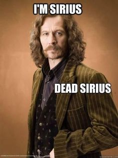 Oh man that hit harder than expected at first I was like LOL then oh bam holy crap NO DONT DIE DONT DIE SIRIUS