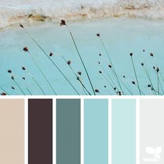 today's inspiration image for { color nature } is by @arasacud ... thank you, Sara, for another inspiring #SeedsColor image share!