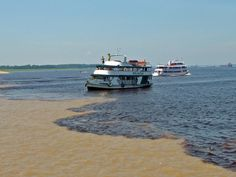 The Meeting of Waters (Portuguese: Encontro das Águas) is the confluence between the Rio Negro, a river with dark (almost black colored) water, and the sandy-colored Amazon River or Rio Solimões, as it is known the upper section of the Amazon in Brazil. For 6 km (3.7 mi) the river's waters run side by side without mixing. It is one of the main tourist attractions of Manaus, Brazil. The same also happens near Santarém, Pará with the Amazon and Tapajós rivers.