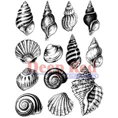 deep red stamps cling mounted rubber stamp seashell collection