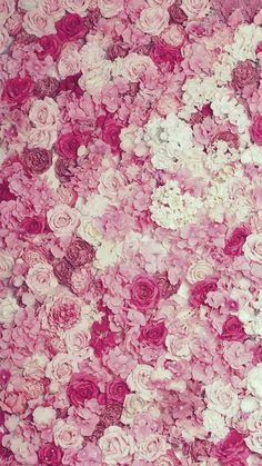 Flowers roses wallpaper ana rosa 53 ideas for 2019 Rose Wallpaper, Tumblr Wallpaper, Wallpaper Backgrounds, Islamic Wallpaper, Hero Wallpaper, Textured Wallpaper, Wallpaper Ideas, Screen Wallpaper, Phone Backgrounds