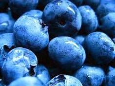 HOW TO GROW BLUEBERRIES |The Garden of Eaden