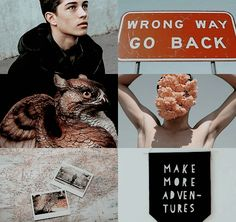 Harry Potter the Next Generation (5/16): James Sirius Potter • January, 1st 2004 • Gryffindor 2/2