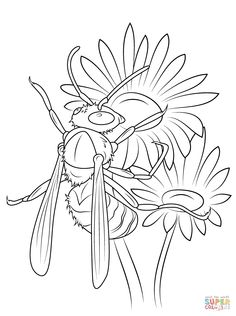 Hornet on The Michaelmas Daisies coloring page from Wasp category. Select from 31927 printable crafts of cartoons, nature, animals, Bible and many more. Printable Crafts, Free Printables, Michaelmas Daisy, Goliath Beetle, Butterfly Coloring Page, Free Printable Coloring Pages, Hornet, Life Cycles, Moose Art