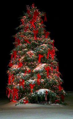 Beautiful ChristmasTree