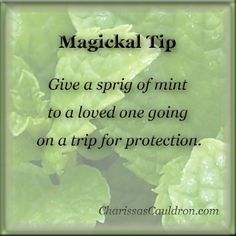 :: ° P a g a n Magick ° :: Give a sprig of mint to a loved one going on a trip for protection. Tarot, Herbal Magic, Magic Herbs, Wicca Witchcraft, Wiccan Witch, Protection Spells, Eclectic Witch, Witch Spell, Magic Spells