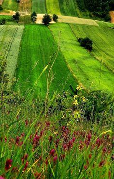 Beautiful uplands Miechowska, Poland