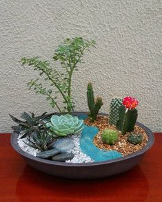 62 DIY Miniature Fairy Garden Ideas to Bring Magic Into Your Home - Page 26 of 62 - DIY Arts wedding Terrarium succulentes Cactus House Plants, Cactus Terrarium, Mini Cactus Garden, Succulent Gardening, Planting Succulents, Garden Ideas To Make, Bottle Garden, Dish Garden, Rustic Gardens
