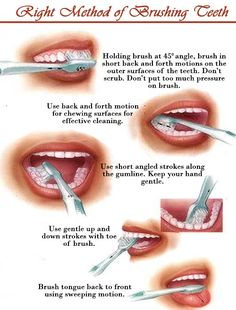 Brushing the teeth is extremely important as the bodily functions are interlinked and a good oral hygiene will provide a firm basis for a healthy body. Dental Hygiene, Dental Health, Oral Health, Dental Care, Teeth Health, Dental Assistant, Whitening Skin Care, Teeth Whitening Diy, Bodily Functions