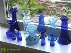 Blue hyacinth vases. A website full of forcing history and how-to's