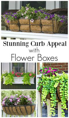How to Add Fabulous Curb Appeal with Flower Box Ideas 10 front porch flower box. How to Add Fabulous Curb Appeal with Flower Box Ideas 10 front porch flower box ideas you can inst Front Porch Flowers, Front Porches, Planters For Front Porch, Deck Railing Planters, Balcony Railing, Raised Garden Planters, Trough Planters, Plants For Hanging Baskets, Porch Garden
