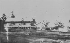 001505PD: Resident doctors' quarters at Blackboy Hill Camp, 1919.  http://encore.slwa.wa.gov.au/iii/encore/record/C__Rb4544113__SResident%20doctors%27%20quarters%20at%20Blackboy%20Hill%20Camp.__Orightresult__U__X6?lang=eng&suite=def