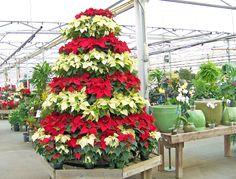 Christmas Tree Flower Arrangement - Decosee.com