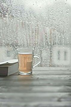 .book...tea...rain...*perfect*