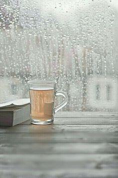 .book...tea...rain...*perfect*