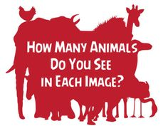 This Animal Outline Quiz Will Test Your Powers Of Perception
