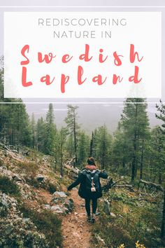 From the ancient freedom to roam law to the bond between man and wild in Swedish Lapland, this is our tale of rediscovering nature in the Arctic North | Swedish Lapland | Lapland | nature in Lapland | Swedish Lapland nature | Sweden // #swedishlapland #sweden #lapland #autumn #fall #nature