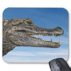 Mouse pad of glasses caiman