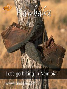Discover the wilderness of Namibia at the Kambaku Safari Resort. 60 km of hiking trails guide you safely through the bush.  #hiking #kambaku #trekking #namibia #africa #afrika #safari #wilderness #bestlodge #adventure #savanna  #luxurylodge #safariresort #lodge #hikinginnamibia #bestsafari #holiday #travel