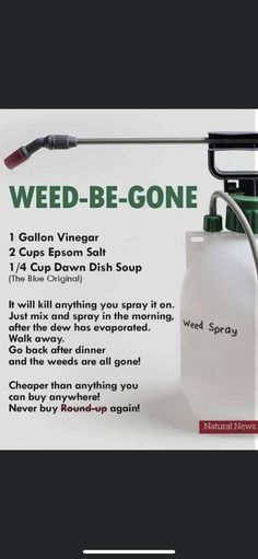 Garden Yard Ideas, Lawn And Garden, Garden Projects, Diy Cleaning Products, Cleaning Hacks, Container Gardening, Gardening Tips, Weed Killer Homemade, Weed Spray