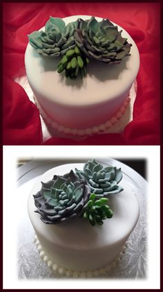 Fondant-covered cake with sugar paste succulents
