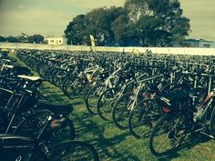 Over 1100 Bikes