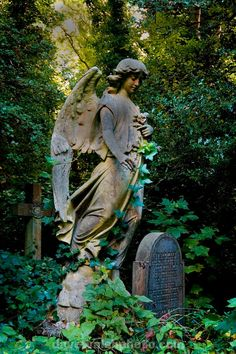 "Photo by Dave Walsh ""Ornamental grave statue in Highgate Cemetery London"" Cemetery Angels, Cemetery Statues, Cemetery Art, Cemetery Monuments, Highgate Cemetery London, Statue Ange, Old Cemeteries, Graveyards, Angeles"