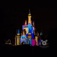 Disney Park - Magic Memories and You