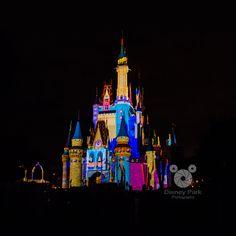 Disney Park - Magic Memories and You