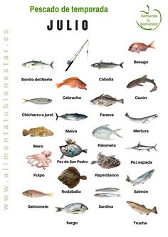 Seasonal fish in July Fish Chart, Homemade Fishing Lures, Food Inc, Cod Fish, Food Humor, Kitchen Recipes, Yummy Drinks, Food Hacks, Seafood Recipes