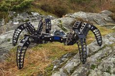 MX-Phoenix : le robot araignée qui fait flipper (Infos-du-Net)