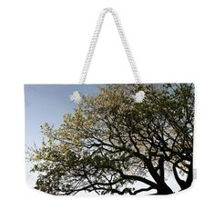 """Reaching 4Spring"" For sale NOW: 24X16 weekender tote bags $34.50 original design by yours truly @  https://fineartamerica.com/artists/nelson+martinez #Totebag #Beachbags"