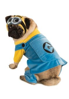 Despicable Me Minion Pet Dog Costume Wish I had a legitimate reason to make Lucy wear this. Haha. Awesome.