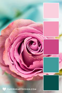 Scheme Color, Color Schemes Colour Palettes, Colour Pallette, Color Combos, Color Verde Jade, Pink Palette, Color Psychology, Design Seeds, Color Theory