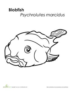 bob the blob coloring pages - photo#2