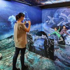 Kudy z nudy - Muzeum Karla Zemana v Praze - filmové zázraky na počkání Interactive Exhibition, Play Hacks, Cinematography, Statues, Aquarium, Places To Visit, Film, Books, Painting