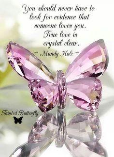 Nunca deberías buscar evidencia de que alguien te ama el amor verdadero es cristalino.