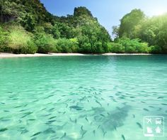 Esta é a Praia da Lagoa, em Ubatuba - SP. Caracterizada por ter areias grossas e muitas conchas, a região é cercada de trilhas históricas e piscinas naturais de tirar o fôlego! Emoticon heart http://www.clubeturismo.com.br/site/