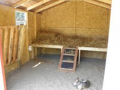 goat barn Sleeping shelf and pallet hay feeder                                                                                                                                                                                 More