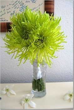 spider mums and button mums - green bouquets