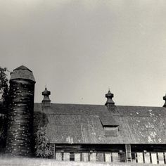 Did you know there was a barn in Tabler Quad? Photo from SBU Archives, Stony Brook University. #fbf #stonybrooku #barns #stonybrook