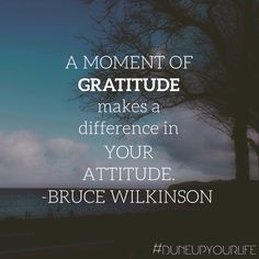 What are you #grateful for today?   For more motivation & inspiration follow DUNE UP YOUR LIFE