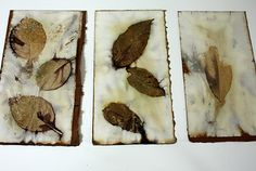Leaves between paper, clamped and simmered in water with iron.