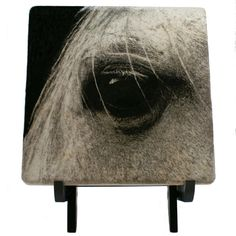 "Arabian Horse Eye Black And White 6"" Art Tile With Wooden Display Easel"