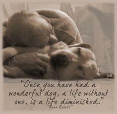 """""""Once you've had a wonderful dog, a life without one is a life diminished."""" Dean Koontz So very true - I've been blessed to have had quite a few wonderful, wonderful dogs! I Love Dogs, Puppy Love, Cute Dogs, Diy Pet, Miss My Dog, Pet Loss Grief, Loss Of Dog, Dog Poems, Dog Quotes Love"""