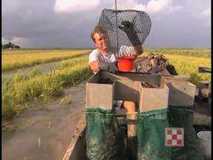 Hot Topics | Vietnam Aquaculture Network