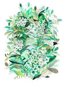 Wild Roses - Archival Print